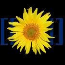 Файл:Логотип Старкрафтвики.png