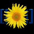 Миниатюра для версии от 21:55, 14 января 2013
