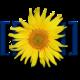 Логотип Старкрафтвики.png